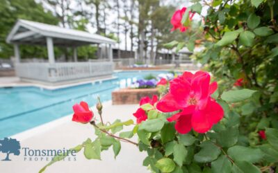 Green Living at Tonsmeire Properties