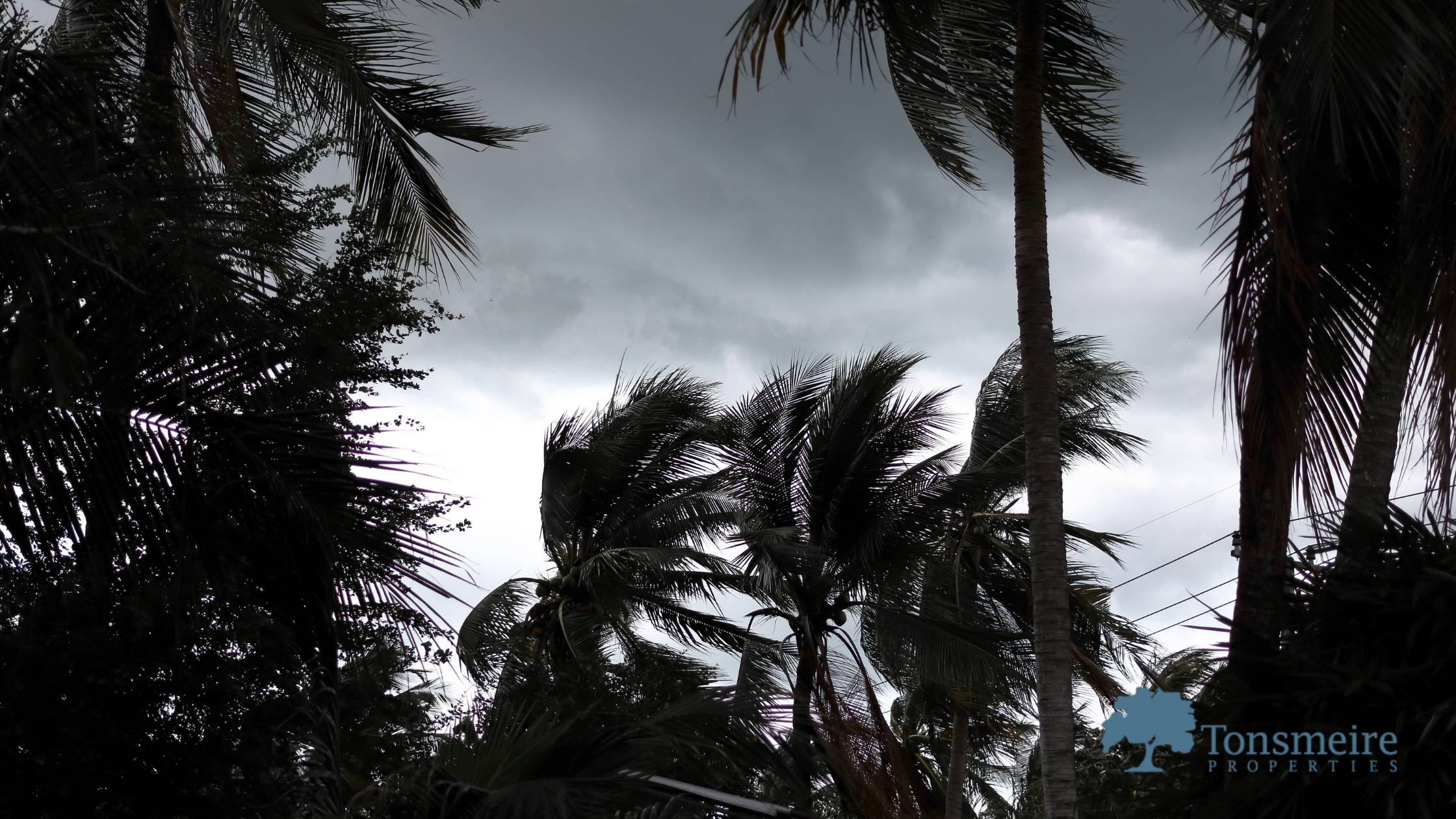 9 Hurricane Tips to Protect You and Your Home